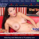 Piladyboy Hub