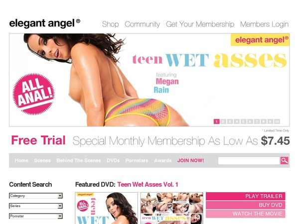 Elegant Angel With Discover Card