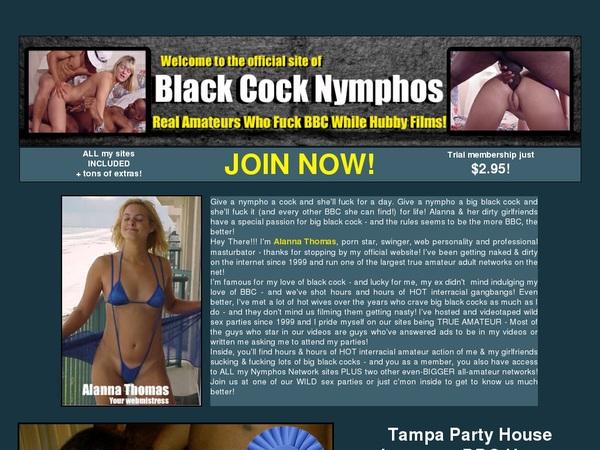 Blackcocknymphos.com Cash