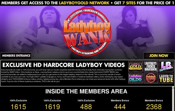 Ladyboywank Join By Phone