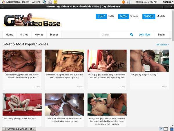 Gay Video Base Login Codes