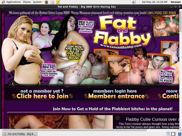 Premium Accounts Fat And Flabby